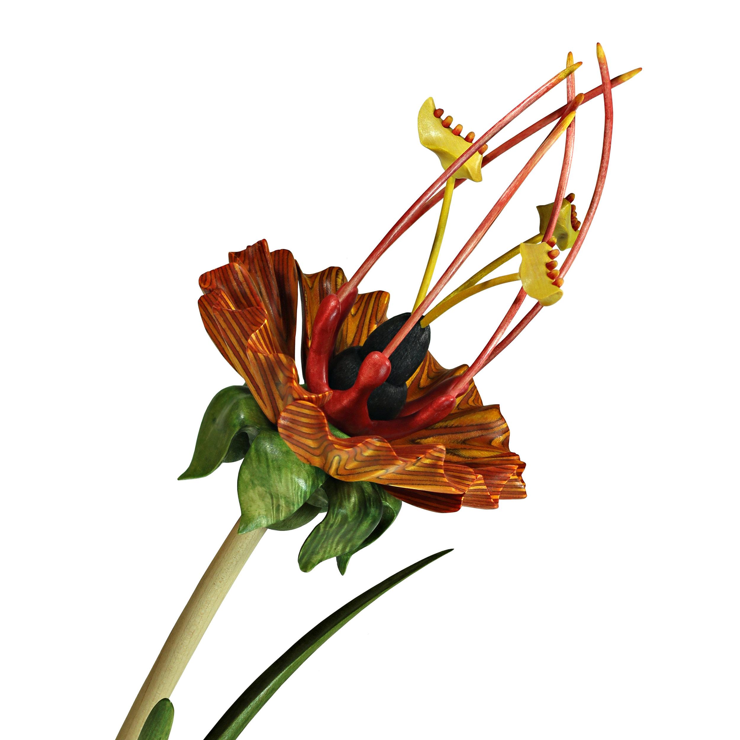 Bloom #22 by Sam Hingston