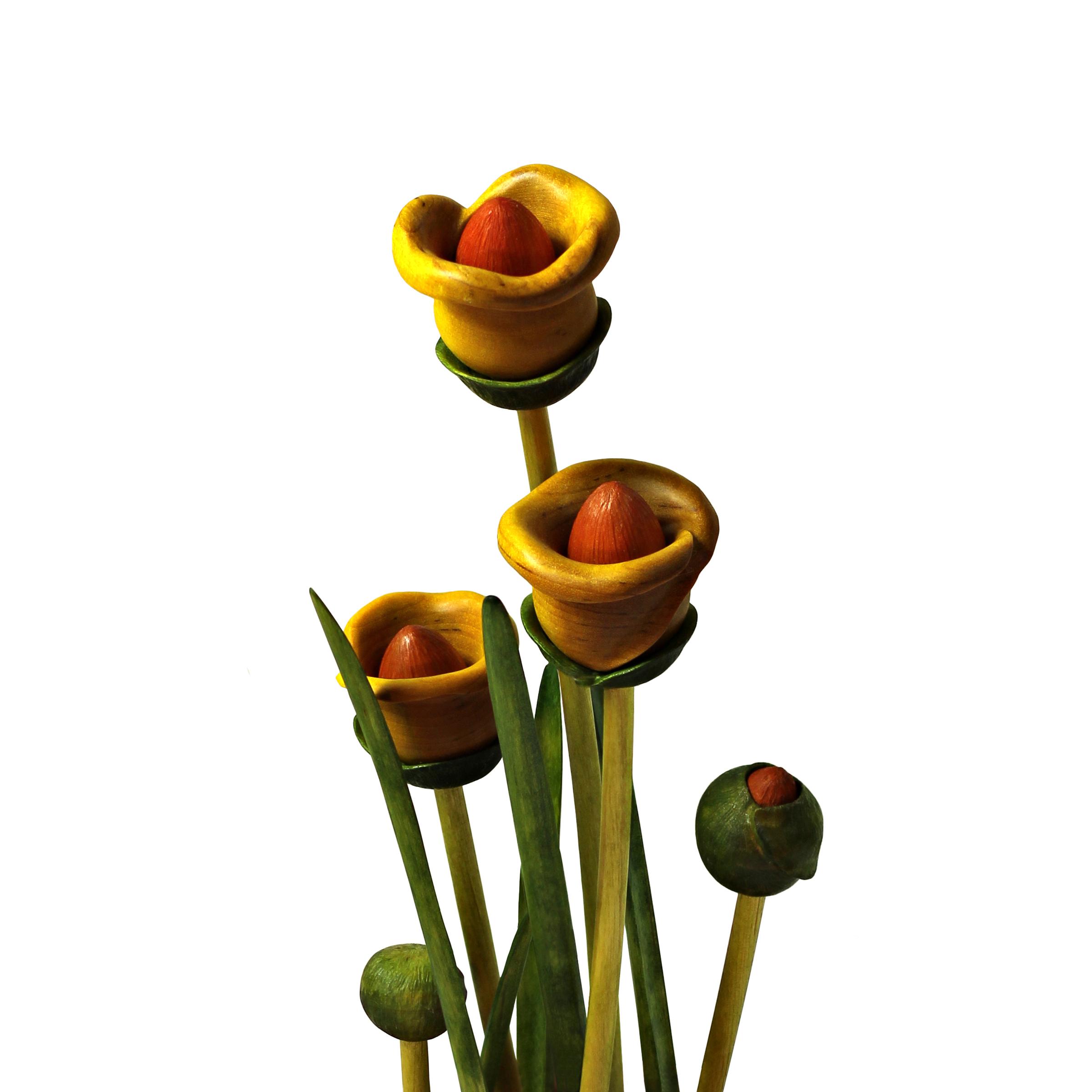 Bloom #24