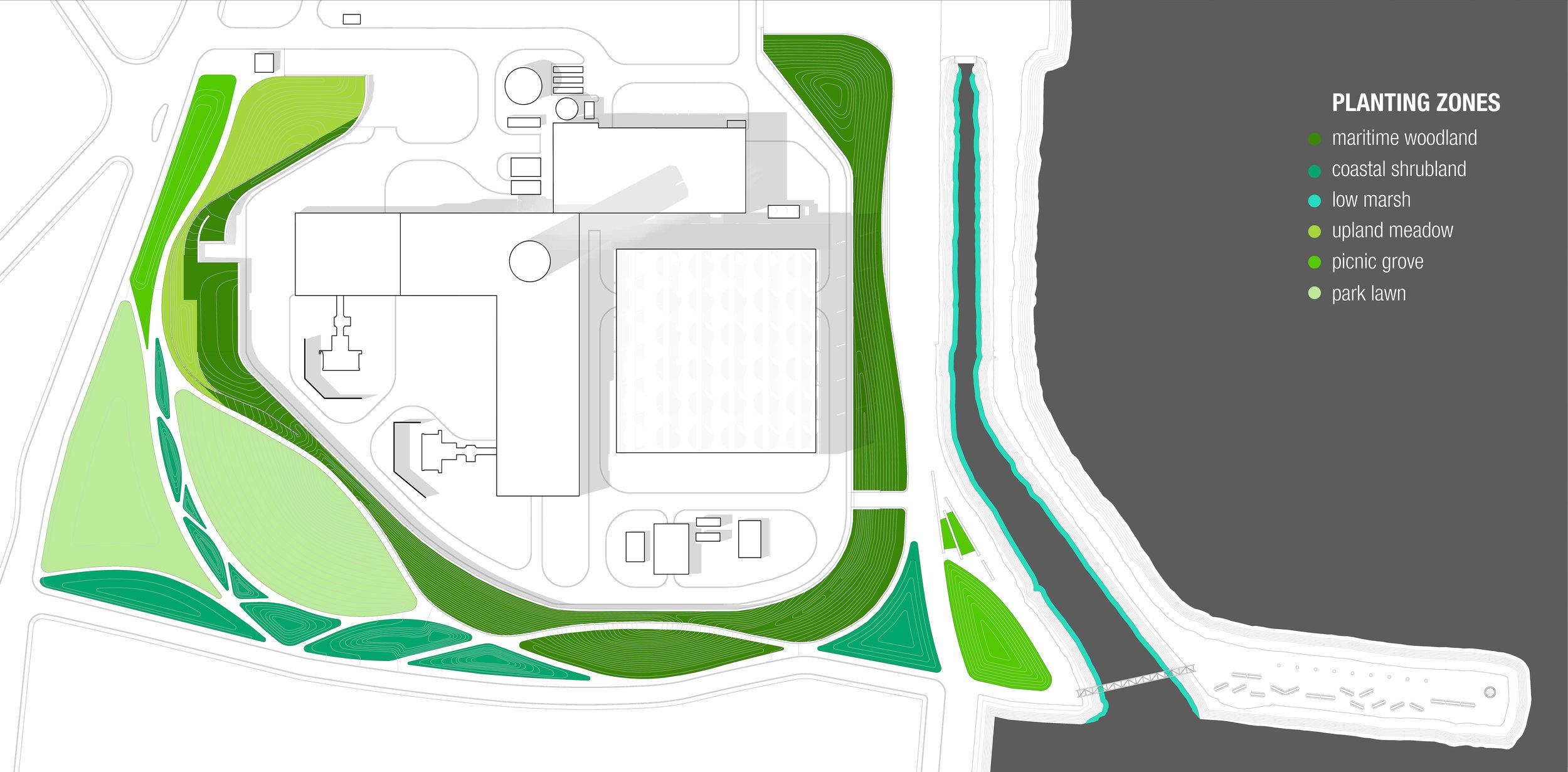 SALEM plant communities.jpg