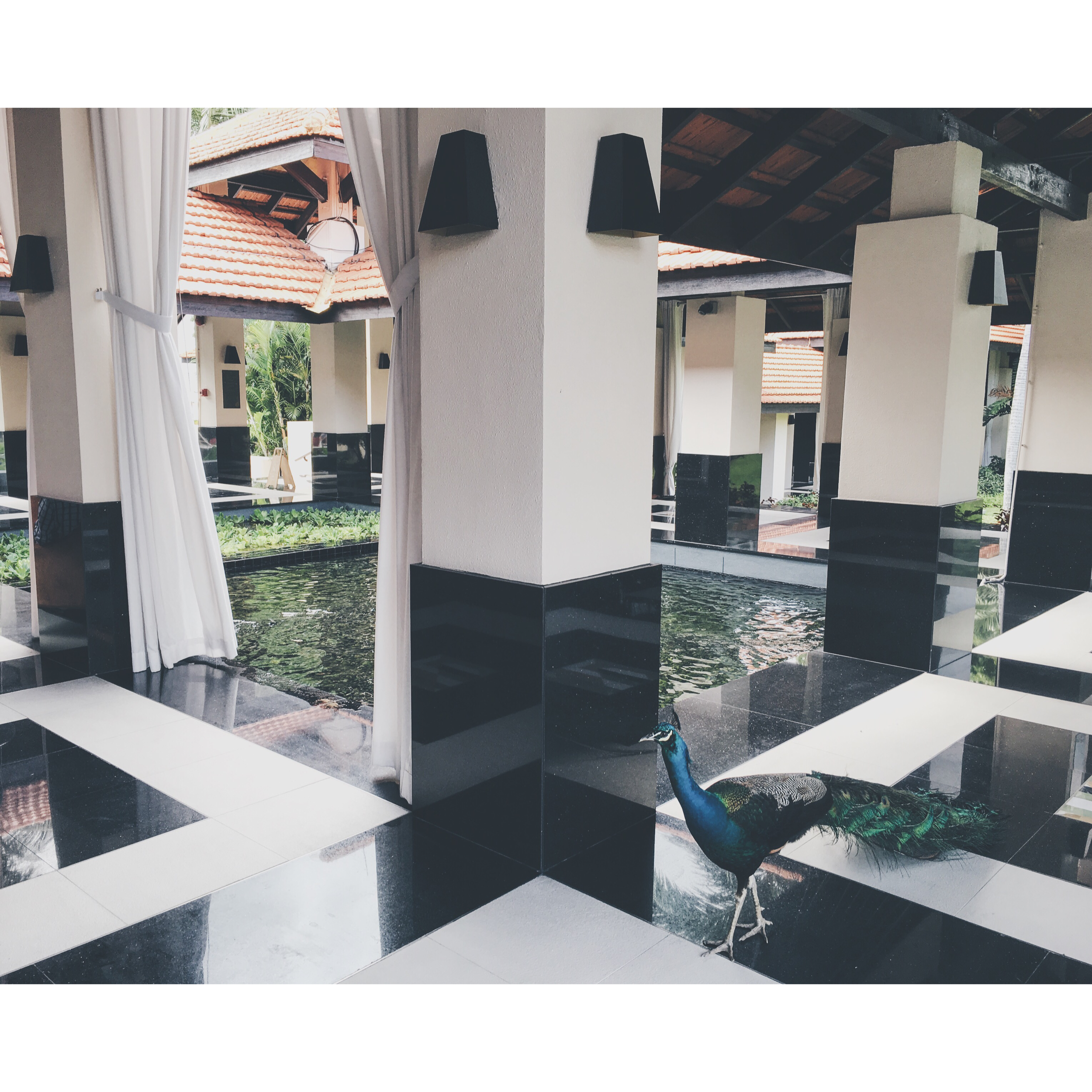Sofitel Lounge on Sentosa