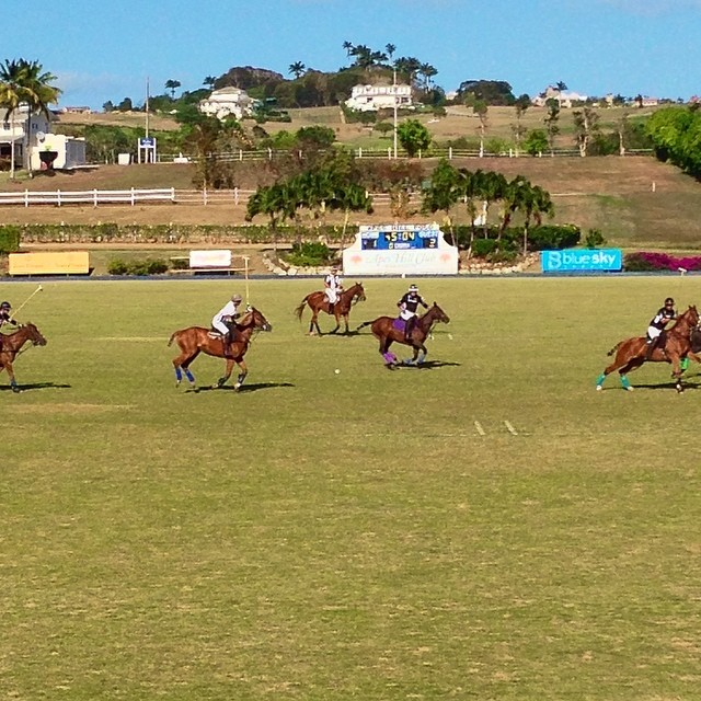 Another picture perfect day @apeshillpolo. #DigicelFourQuarters final up next at 4:30!