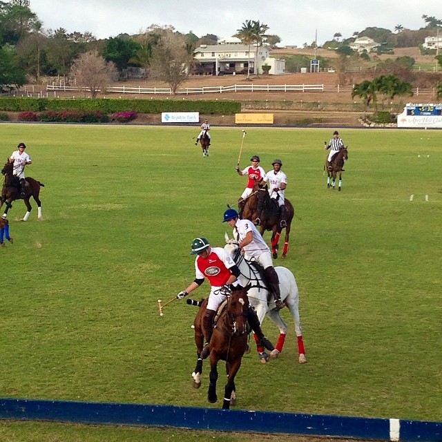 Lion Castle playing as #ICBL beating Buttals playing as #rangerover 6-2 in the 4th chukker