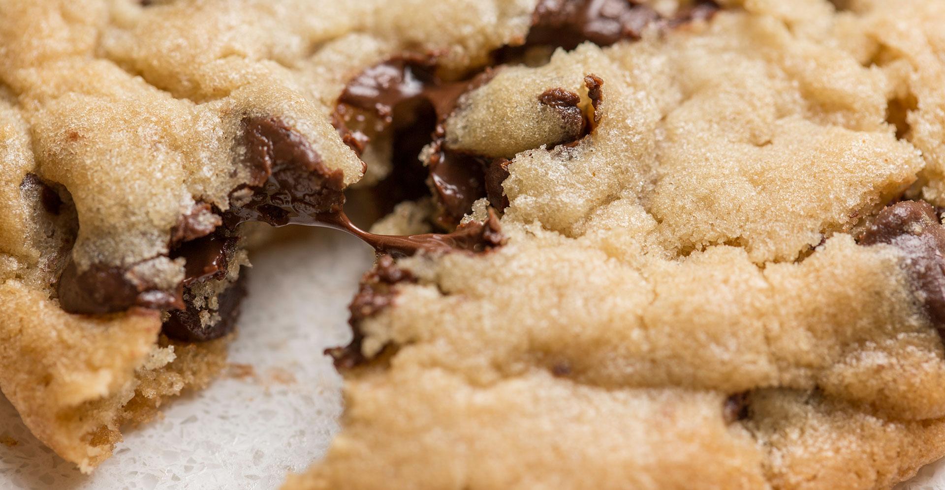 Cookie-Photo-Breaker2.jpg
