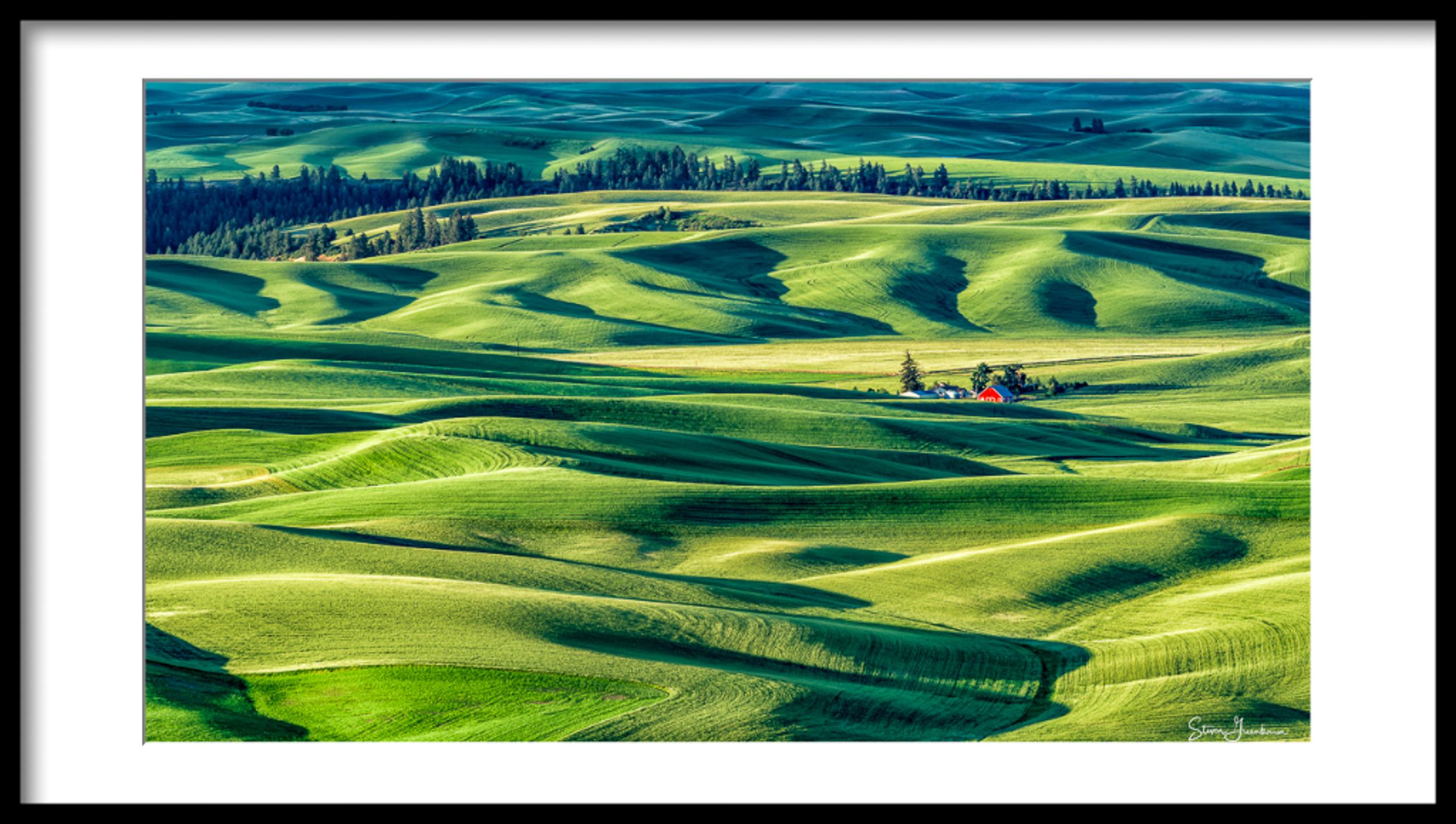 greenbaum-steven_farmview.jpg