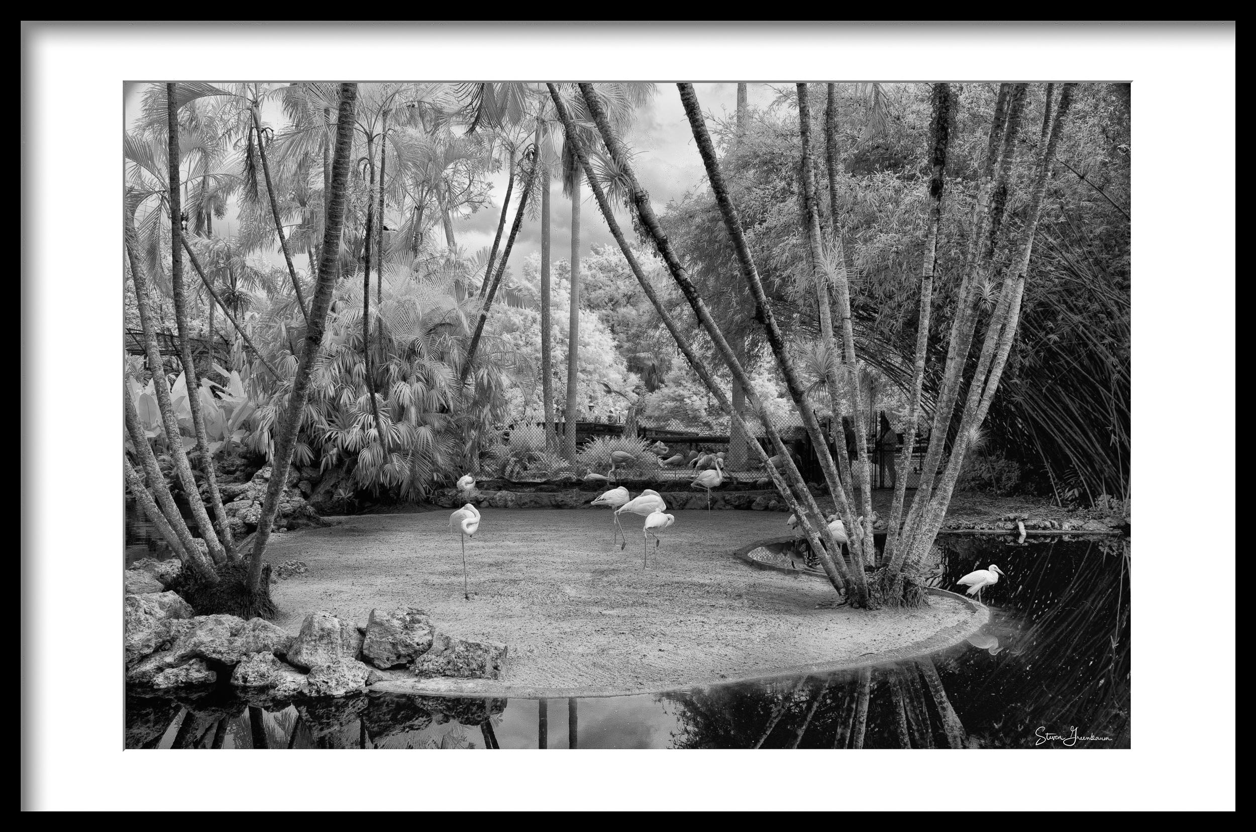 Flamingo Gardens, Davie FL, 2018