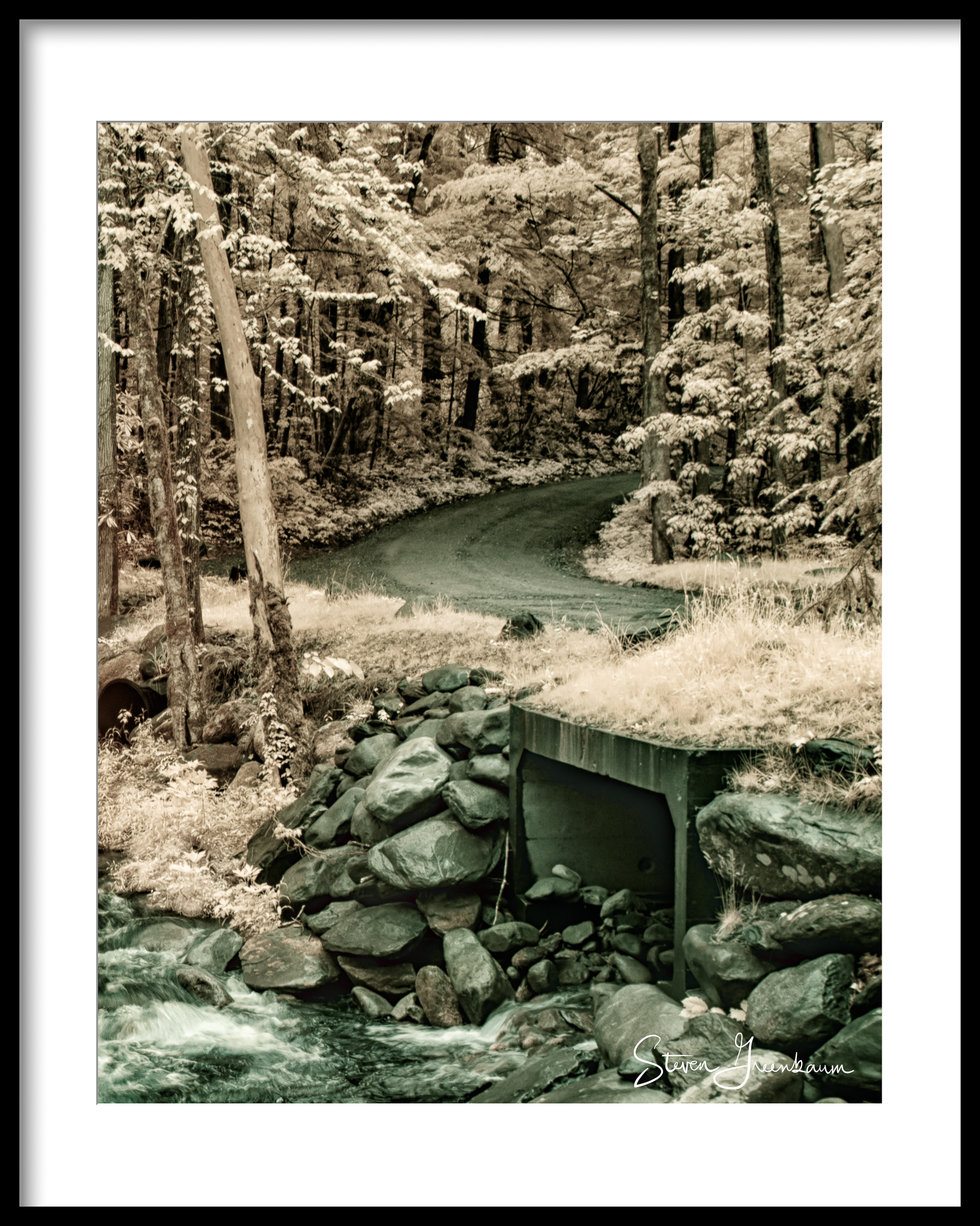 Greenbrier Cove, Smokies, 2016