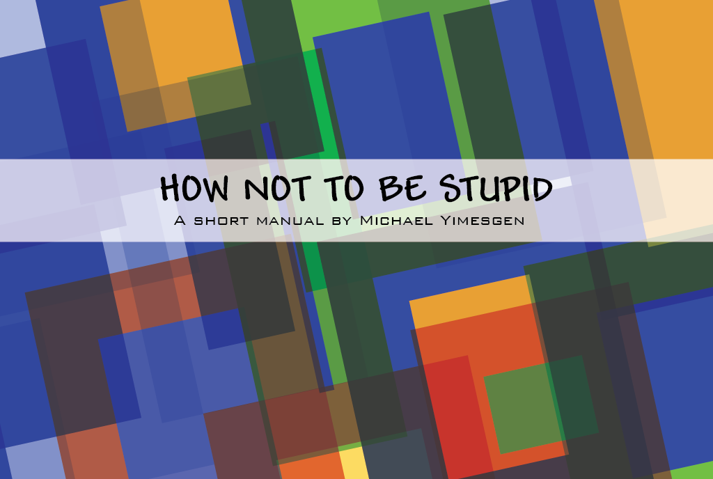 How NOT to be Stupid (The Manual) - Michael Yimesgen