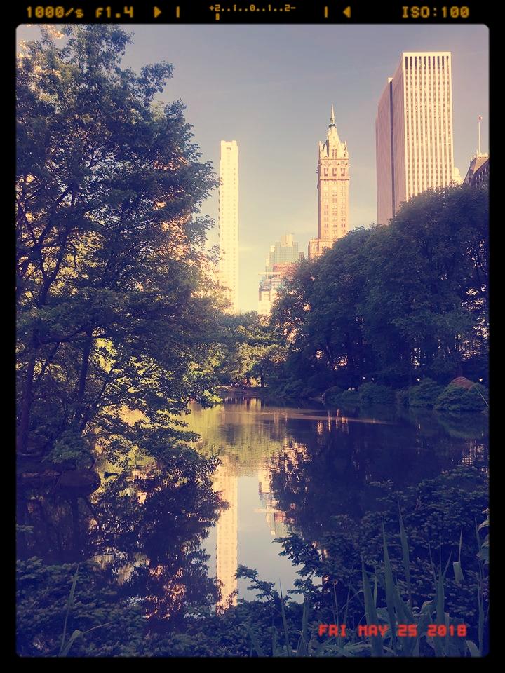 Central Park NY photo by arisa