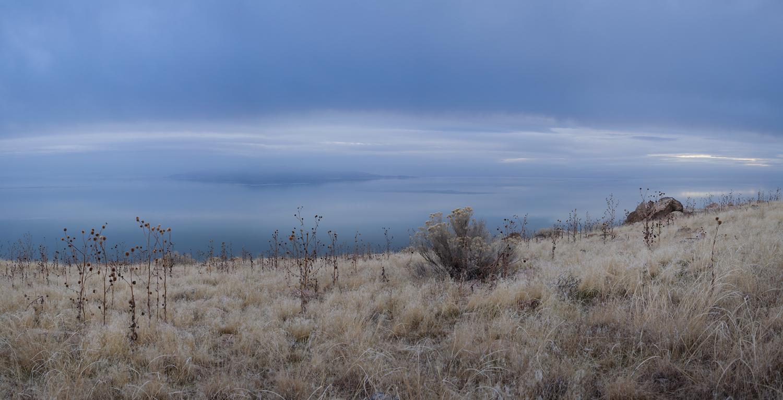 Antelope_Island_5725.jpg