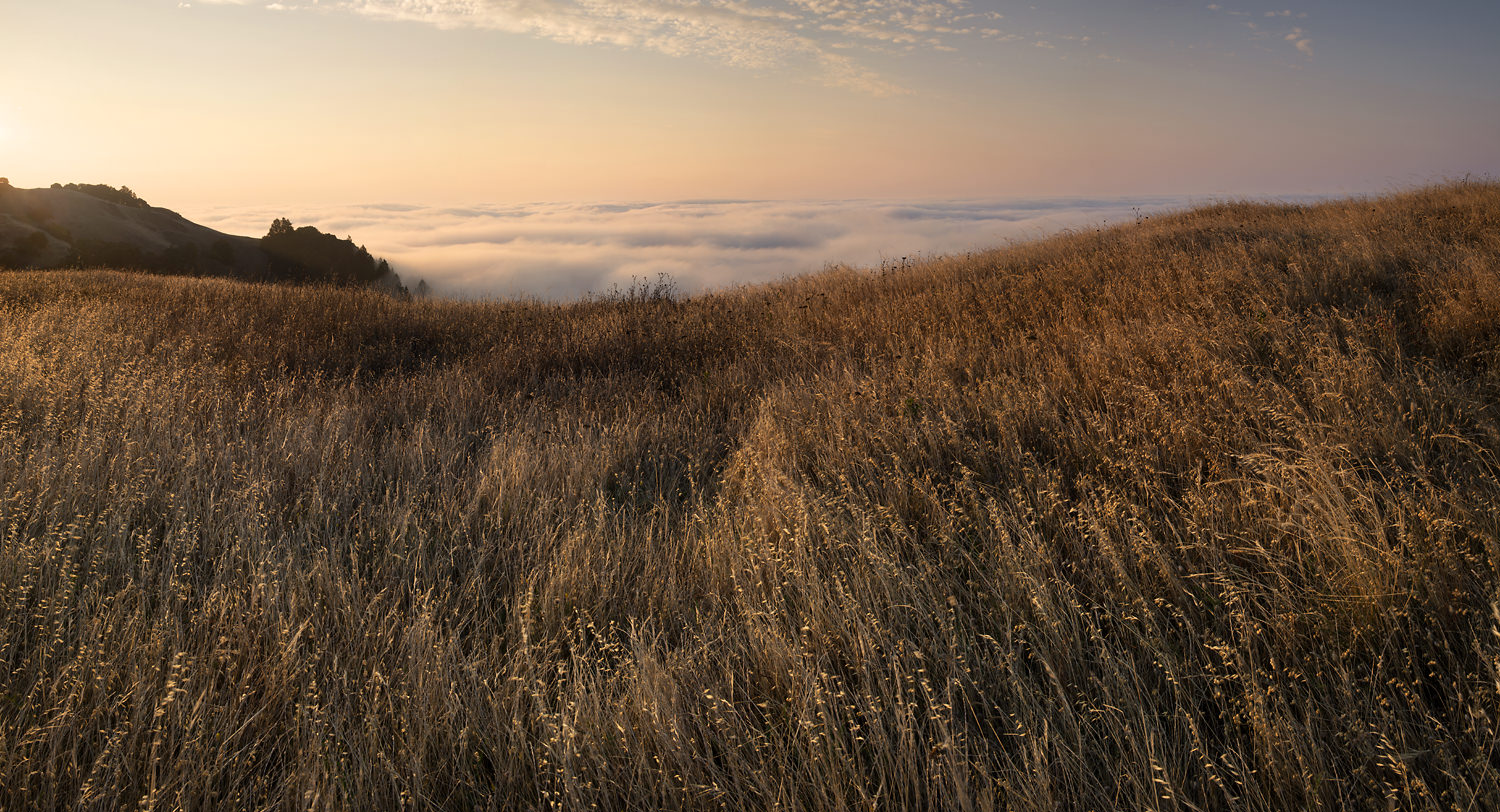 Mt_Tam_Sunrise_-2836.jpg