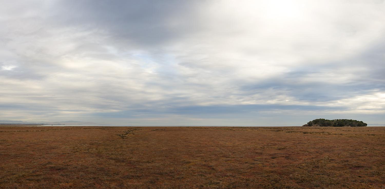 A Distant Marshland