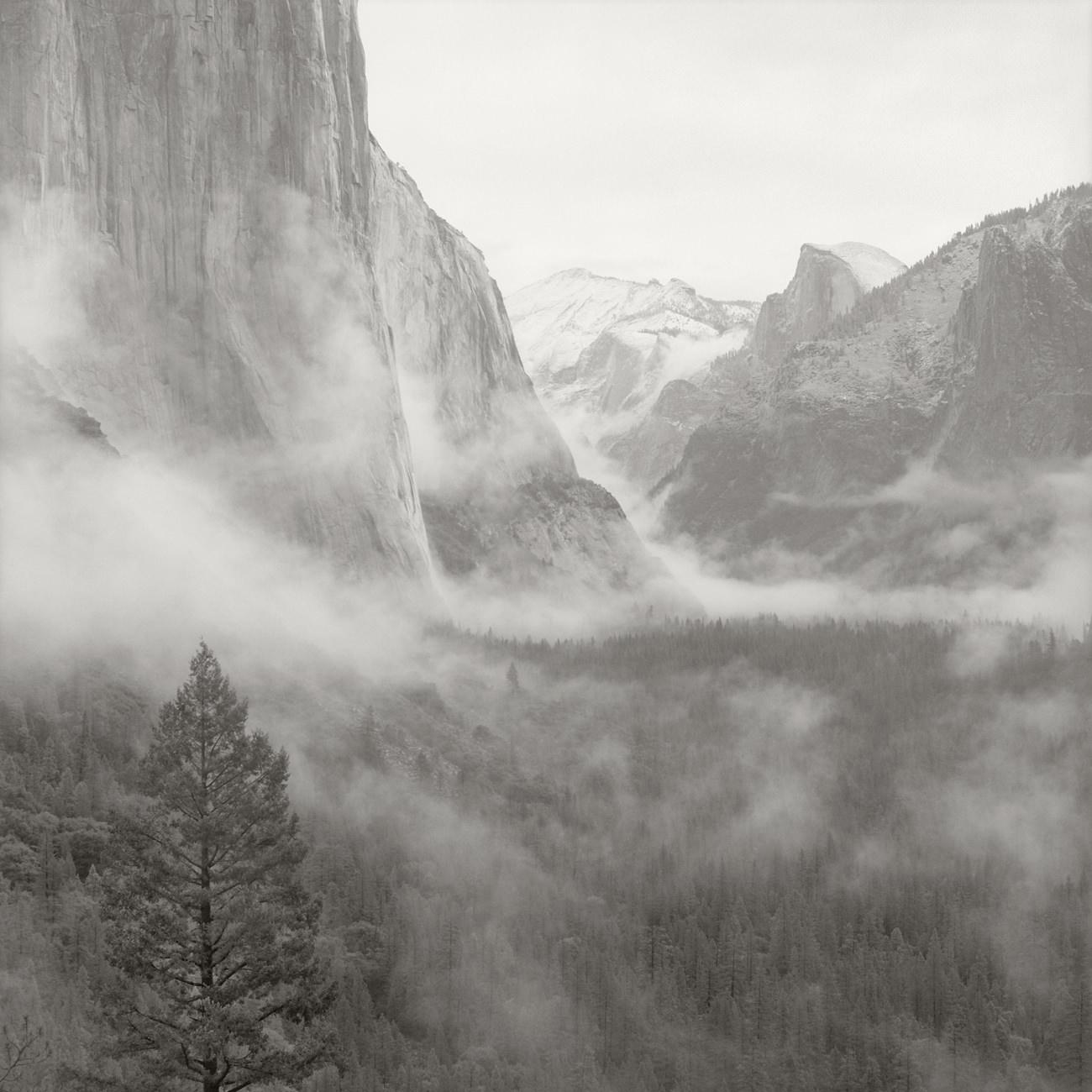 Yosemite_08034.jpg
