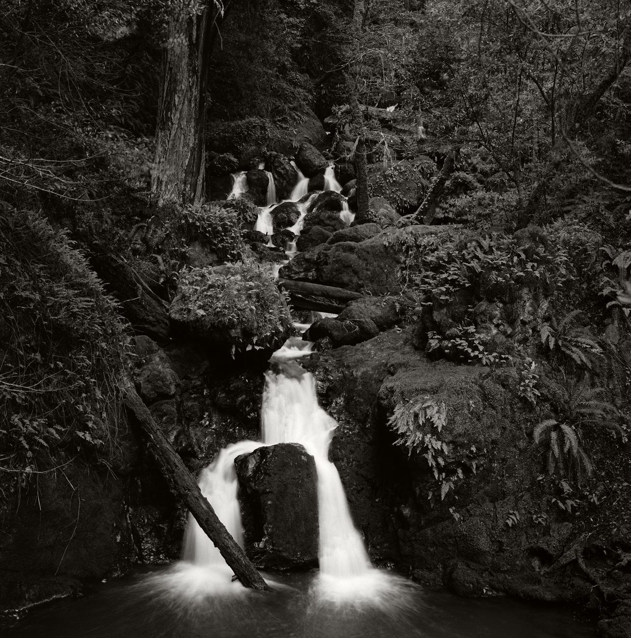 Cataract_Falls_Mt_Tam_2013-3.jpg