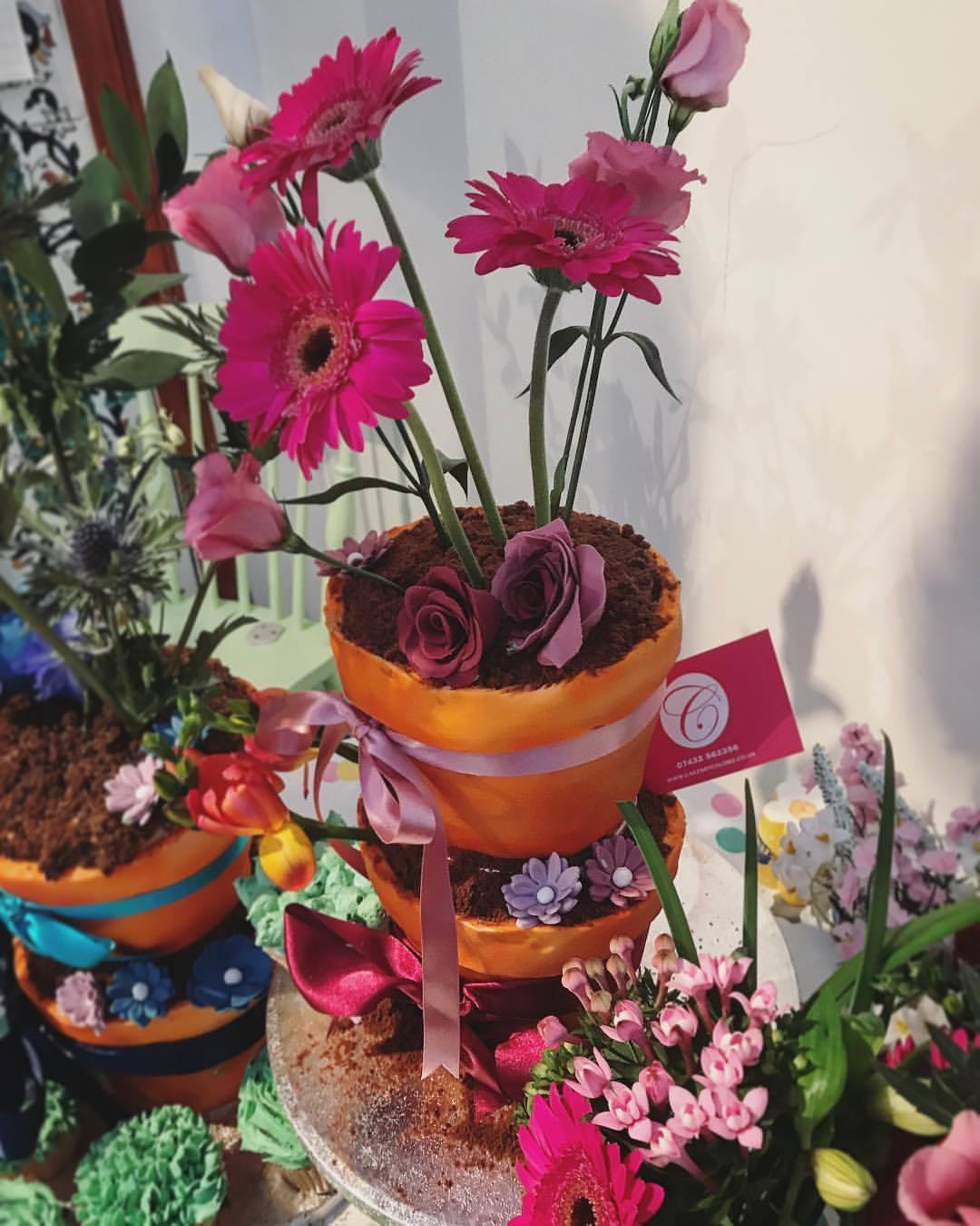 Flower Pot Wedding Cake.
