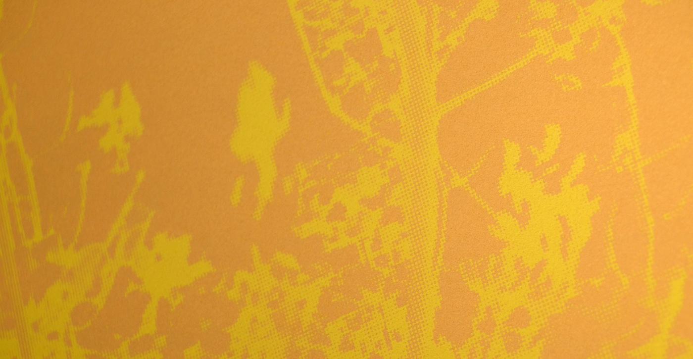 Mustard (close up)