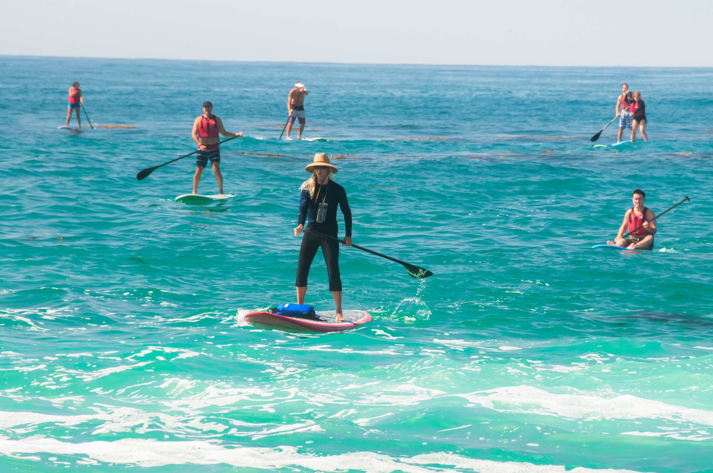 group stand up paddleboarding