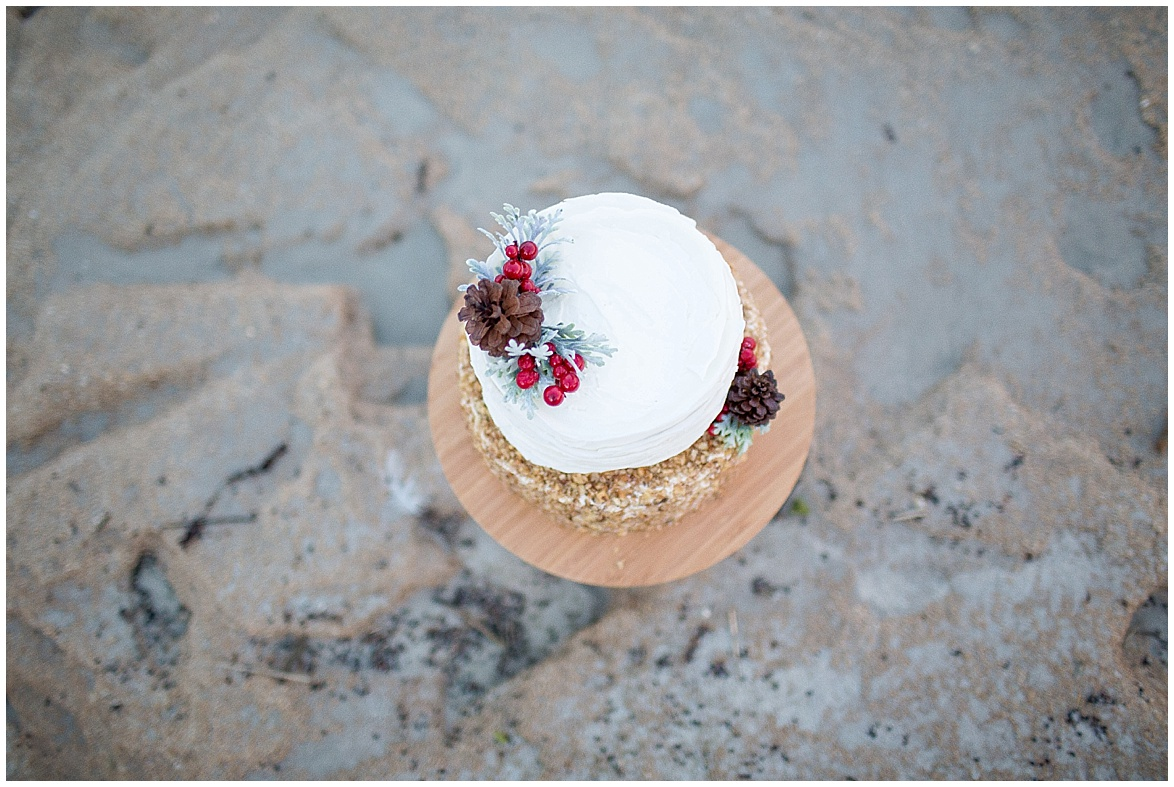 winter beach cake by stevie's got cakes @psjphotography