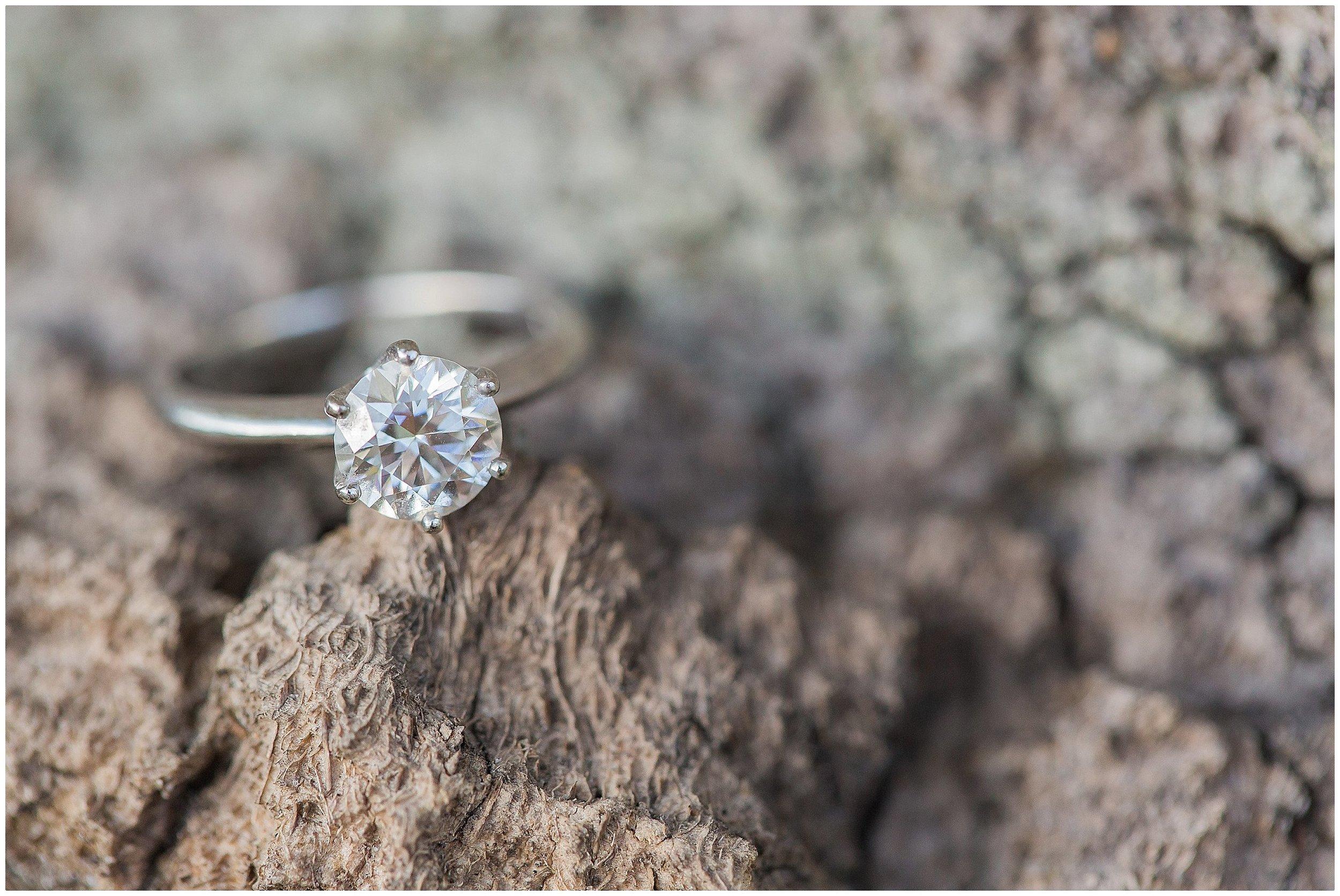 Gorgeous Ring Shot on tree branch