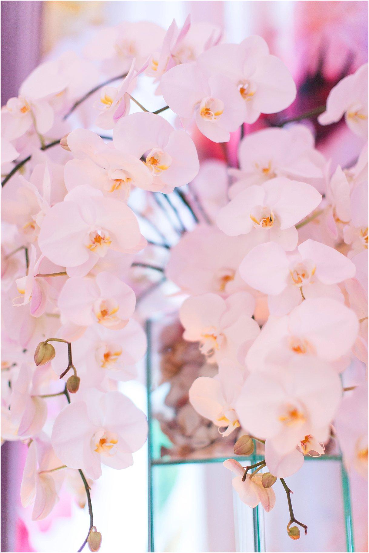 MarketingImages_0020.jpg