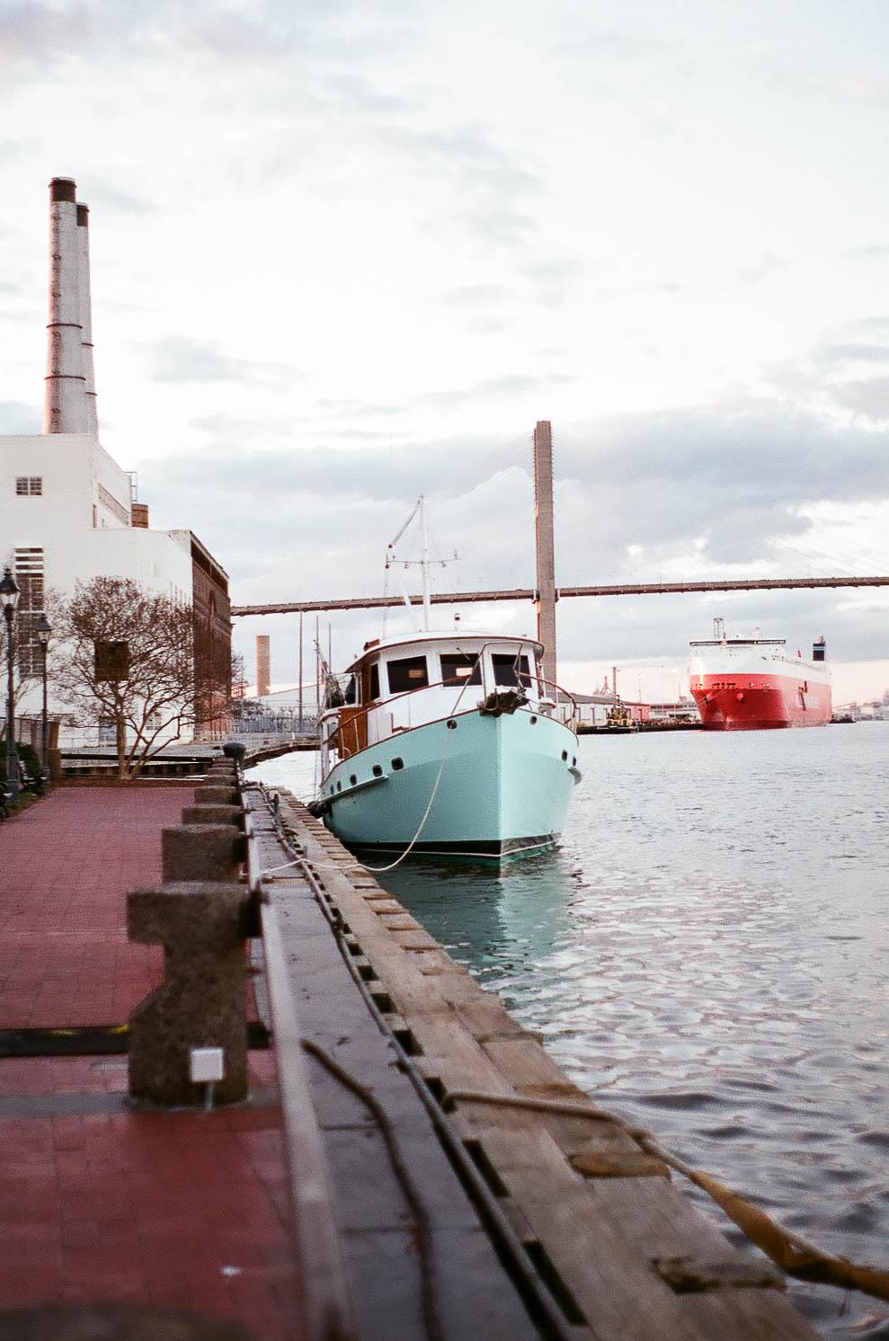 Savannah-1.jpg