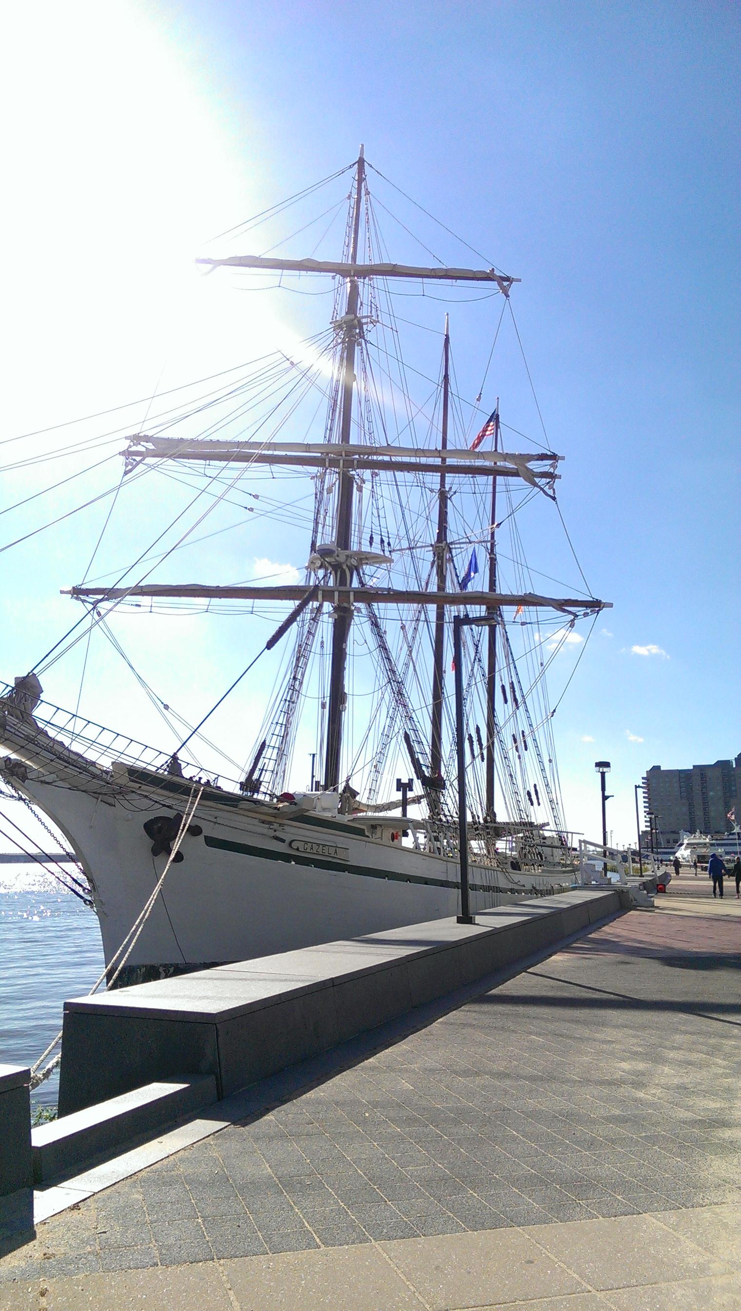 gazela ship
