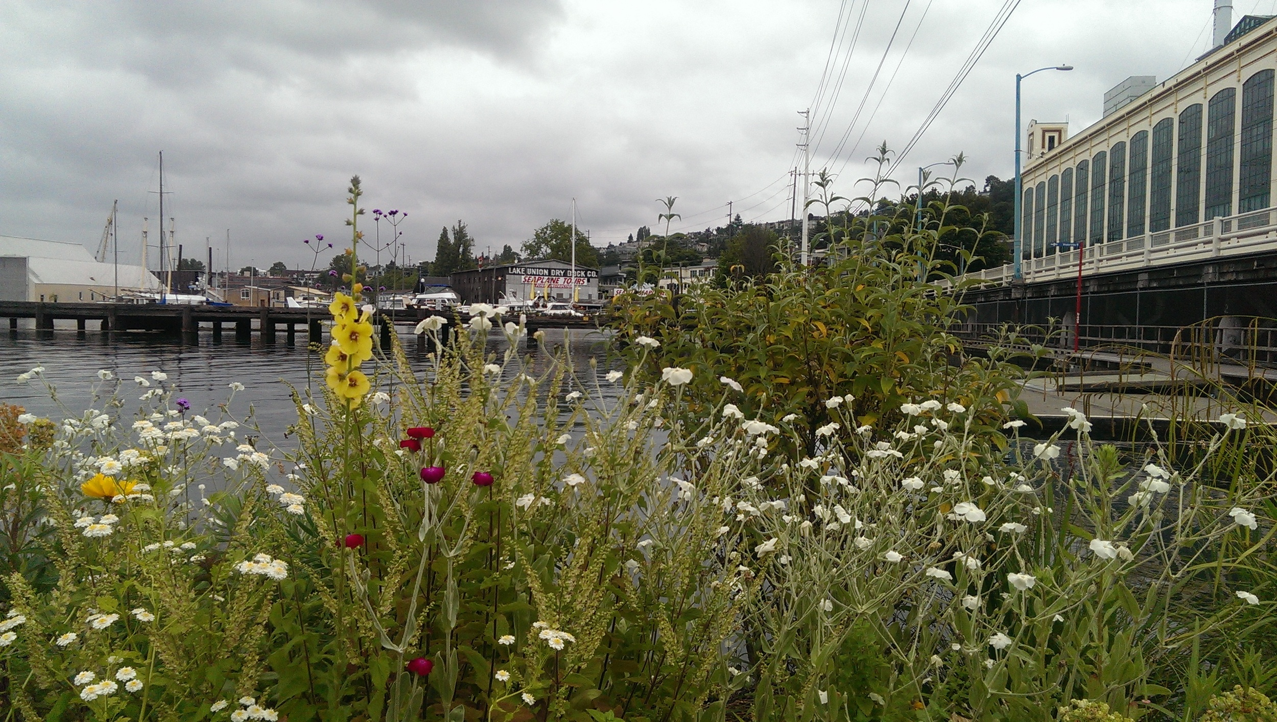 49 - nature + industry = Seattle