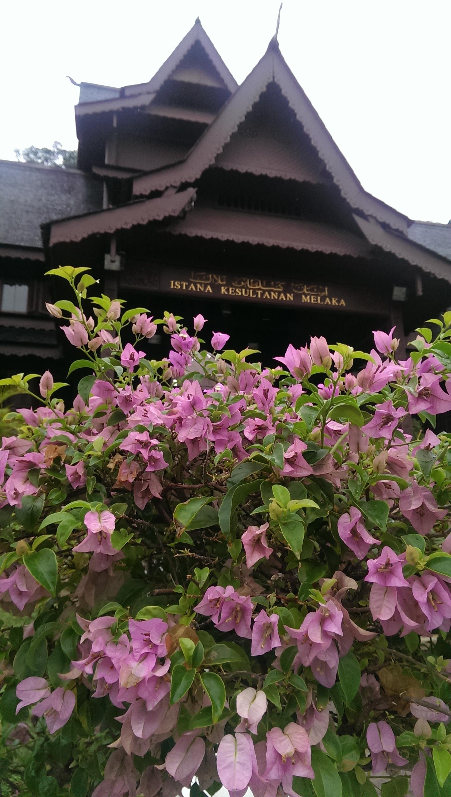 Malaysian Palace