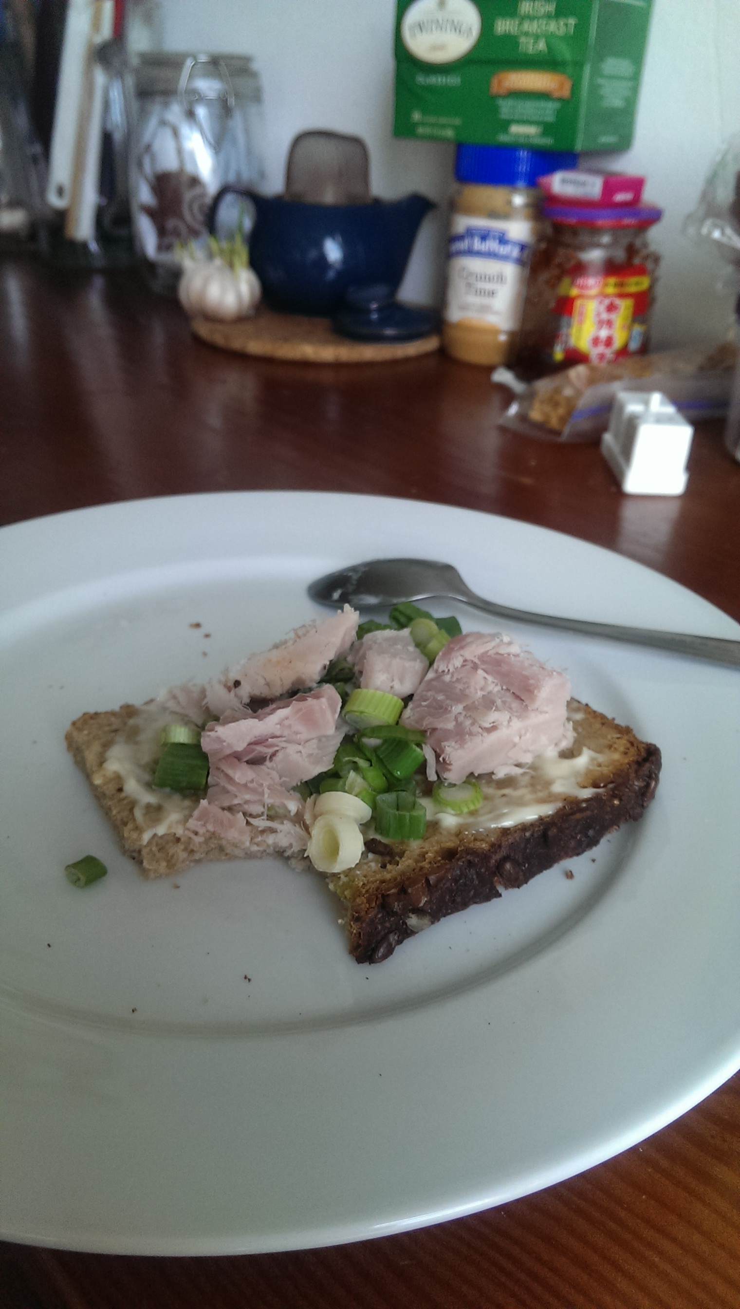 Smoked Tuna filet chunked onto a slice of sunflower seed rye with scallions.