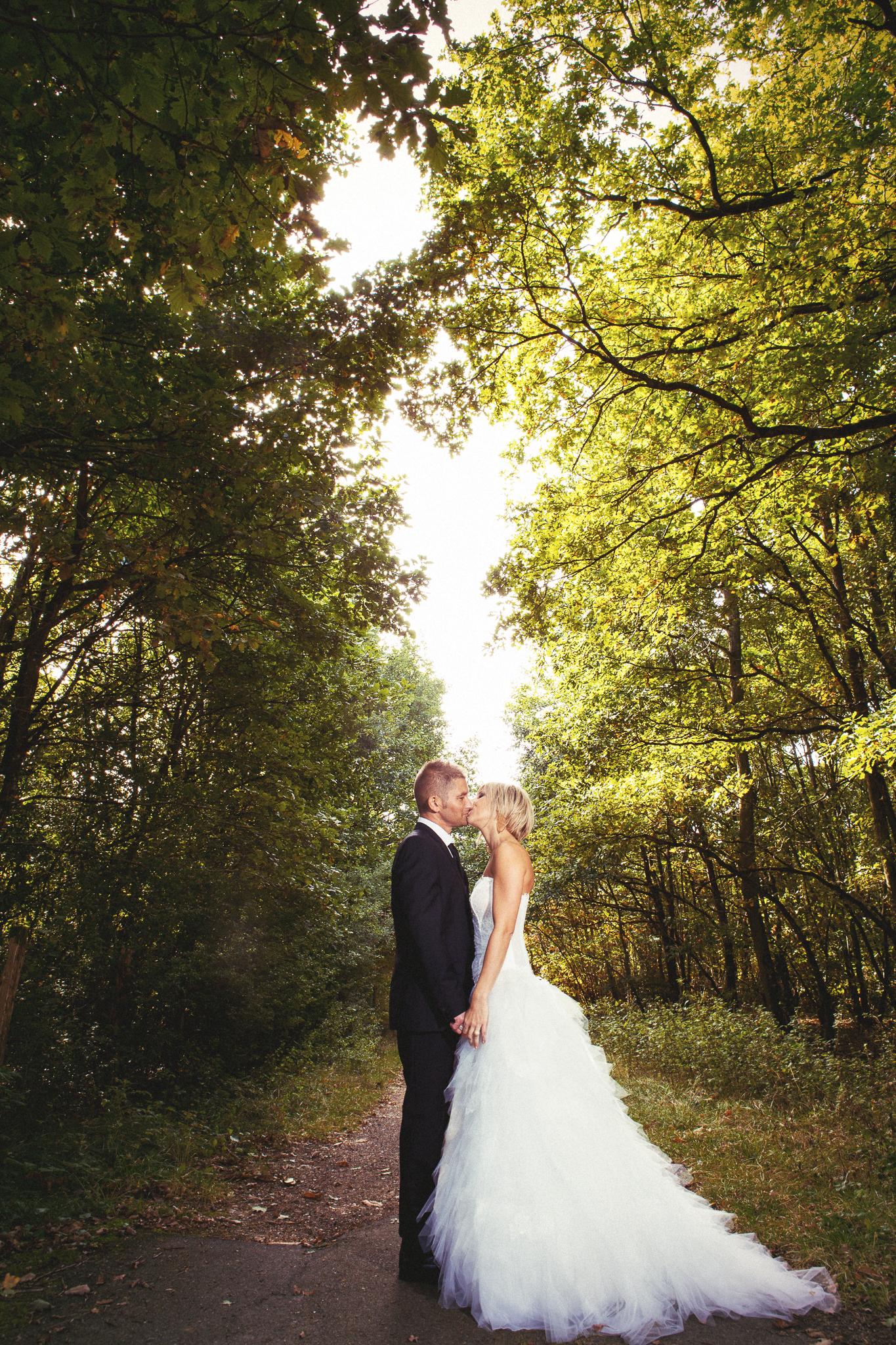 couple bois, forêt