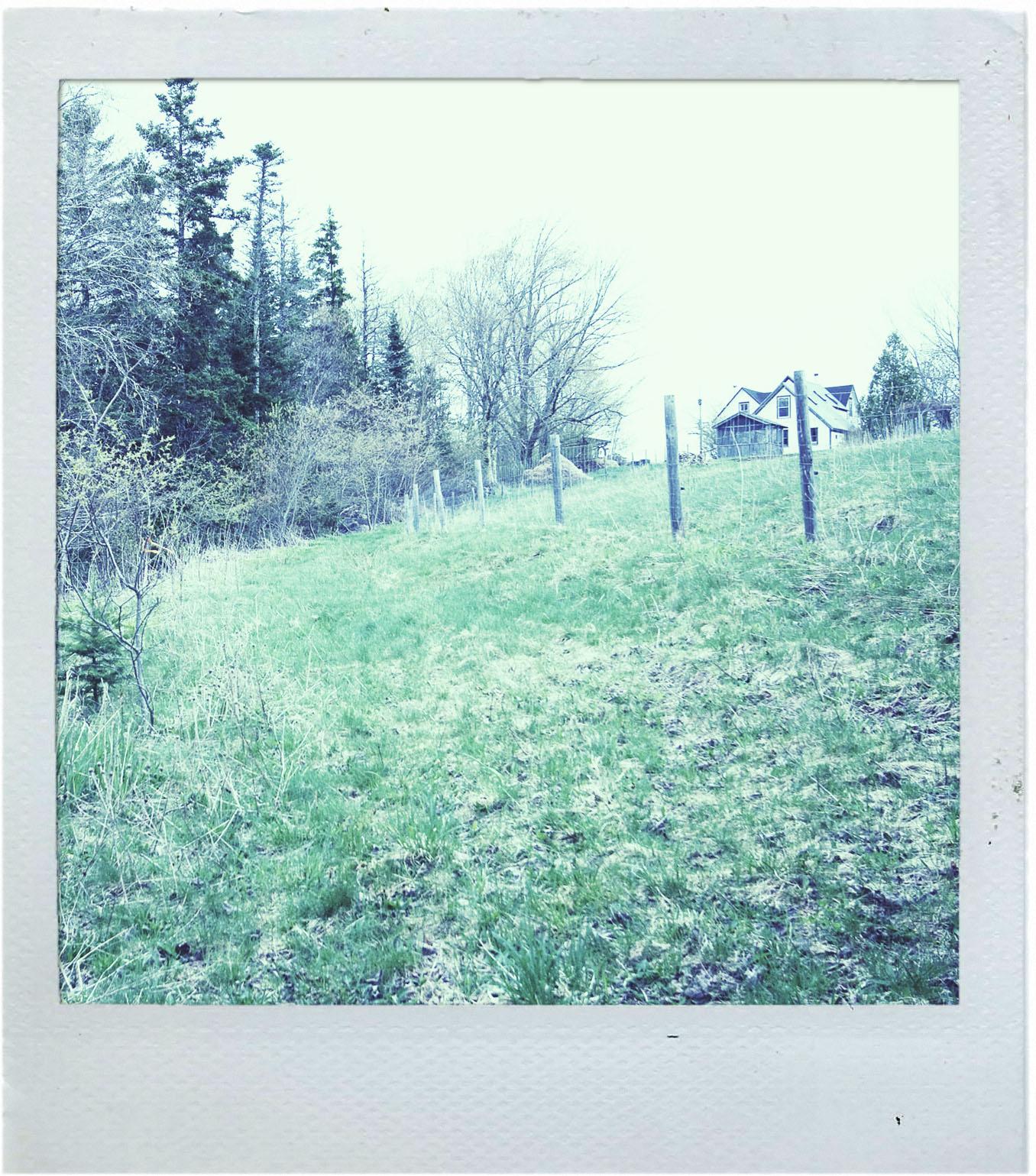 AuthorCard_Polaroid_2.jpg