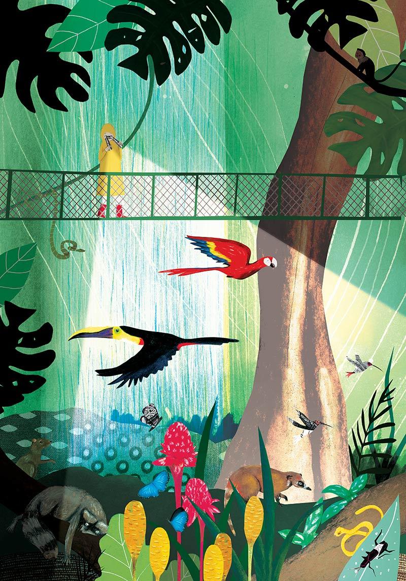 josee_bisaillon_portfolio_illustration_poster_biodiversity_2.jpg