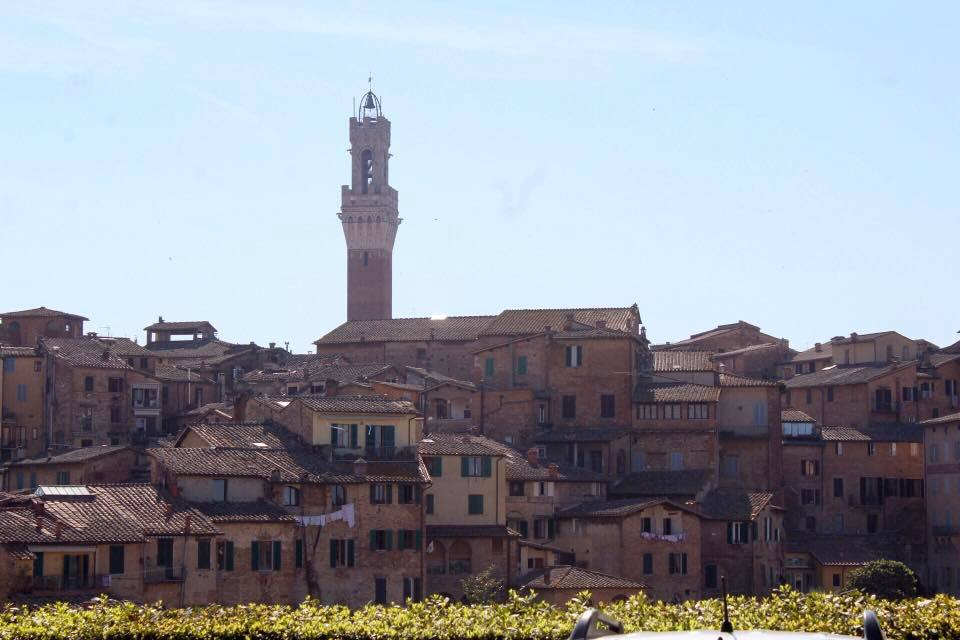 Hills of Siena