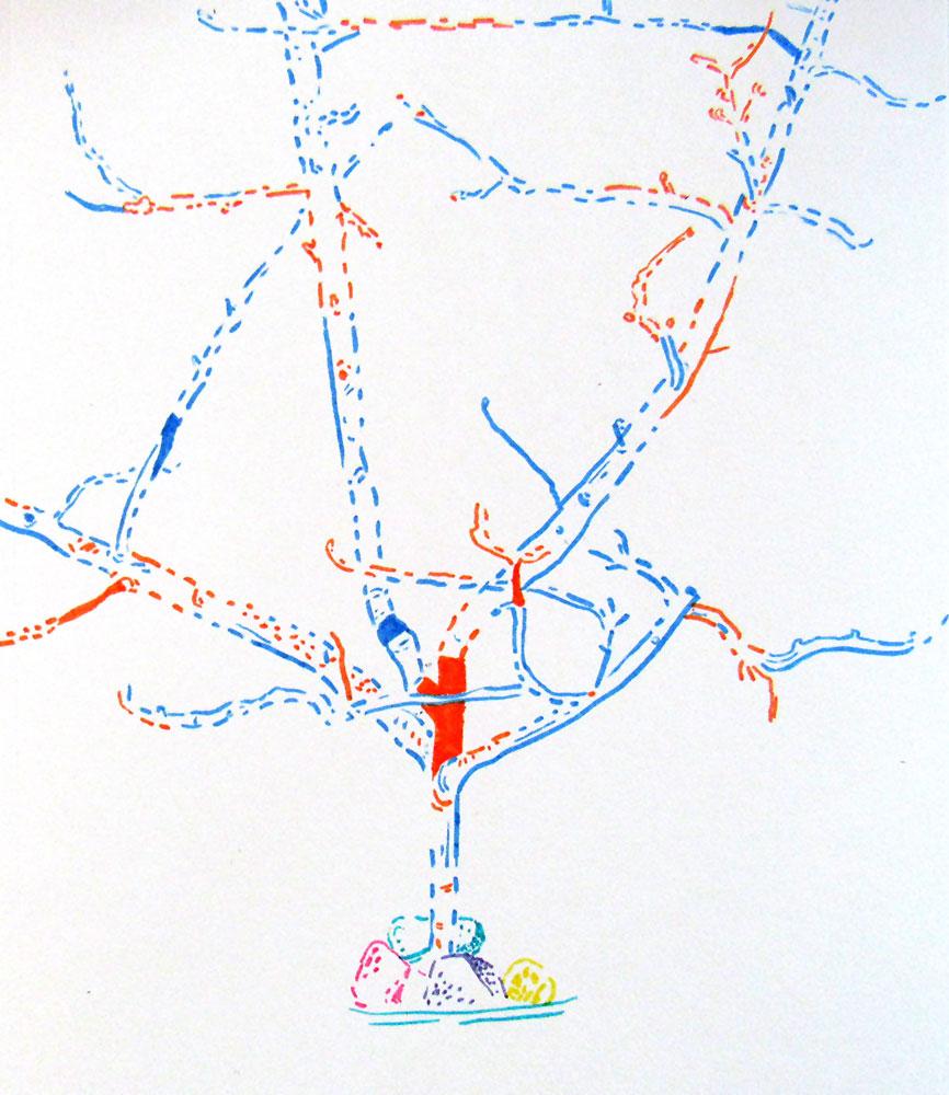 79 - Apple Tree Study