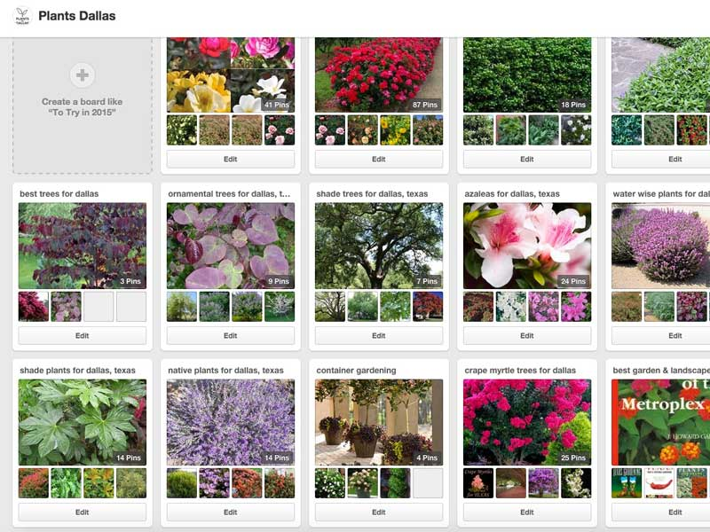 PINTEREST IS AN TREMENDOUS RESOURCE FOR GARDEN IDEAS AND PLANTS