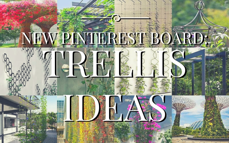 new-pinterest-board-trellis-ideas