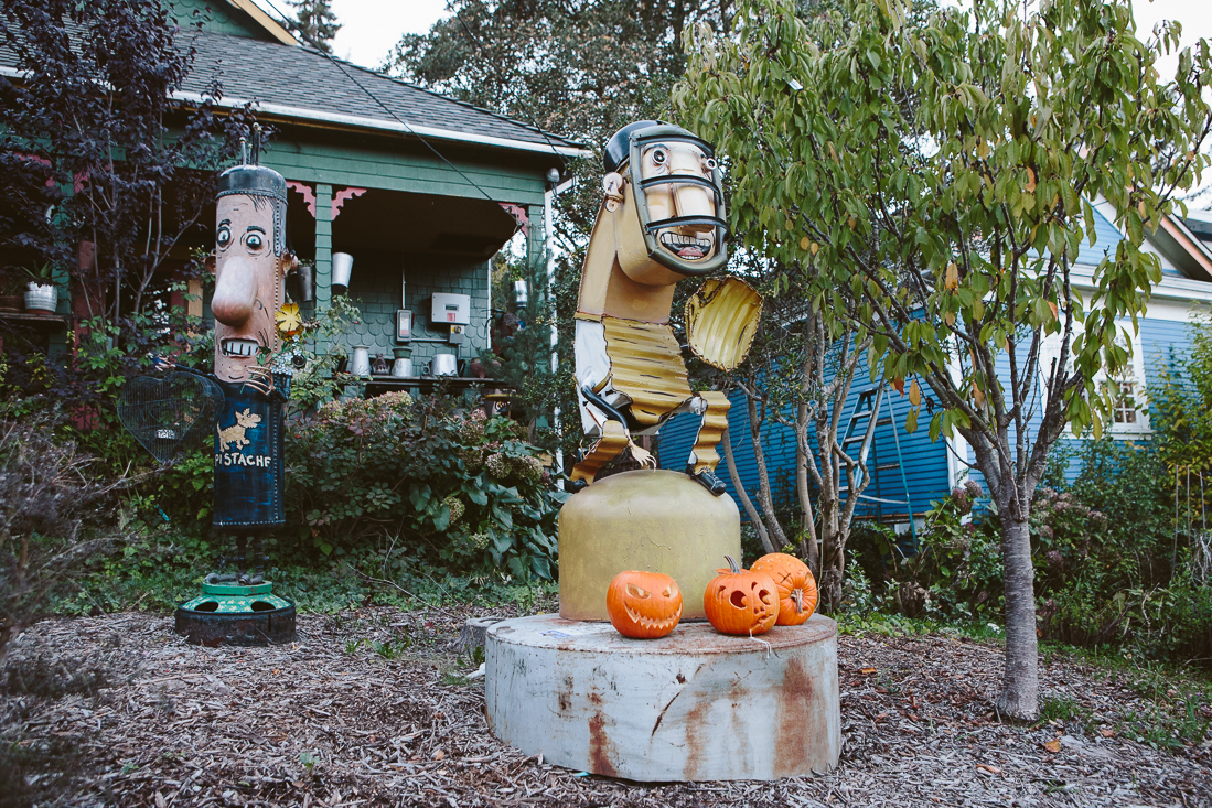 His pumpkins are still fresh from Halloween. I bet the trick-or-treating was intense here.