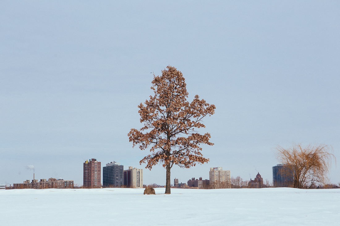 Day 82 / Mile 9530. Not all of Detroit is scary and depressing. Belle Isle was gorgeous with the fresh fallen snow.