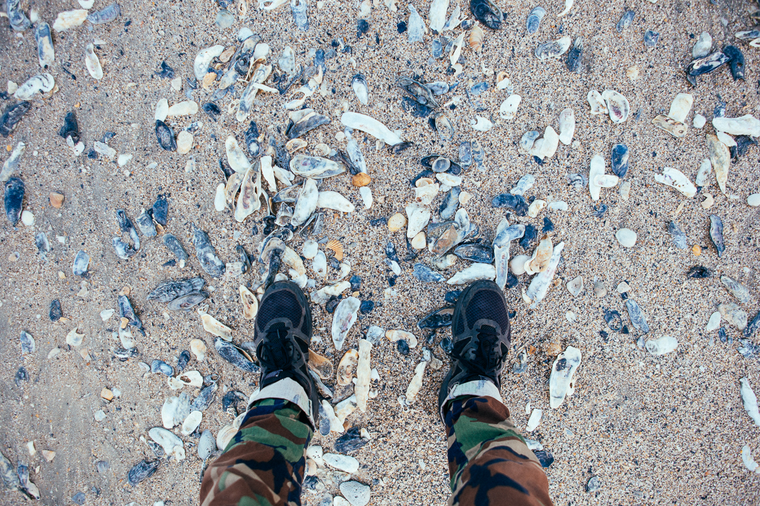 Over near Botany Bay Plantation is a shoreline with more shells than I've ever seen.