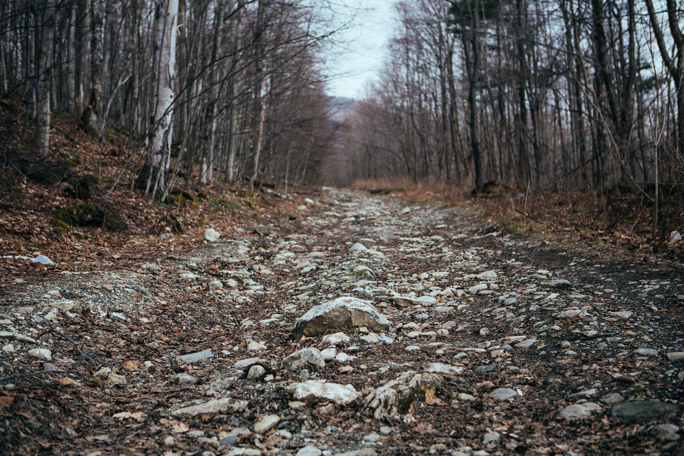In the backwoods of the Dorset area is an abandoned rock quarry. I tried driving back to it, but around this corner was a muddy road that my camper van couldn't climb. I hoofed it from here.
