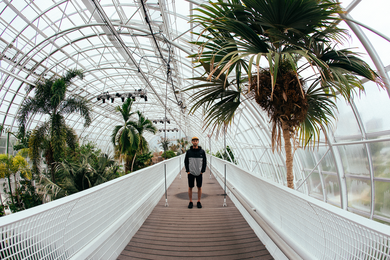 I showed up in Oklahoma City in the middle of a heavy rainstorm. Luckily I  found this cool conservatory to take shelter.