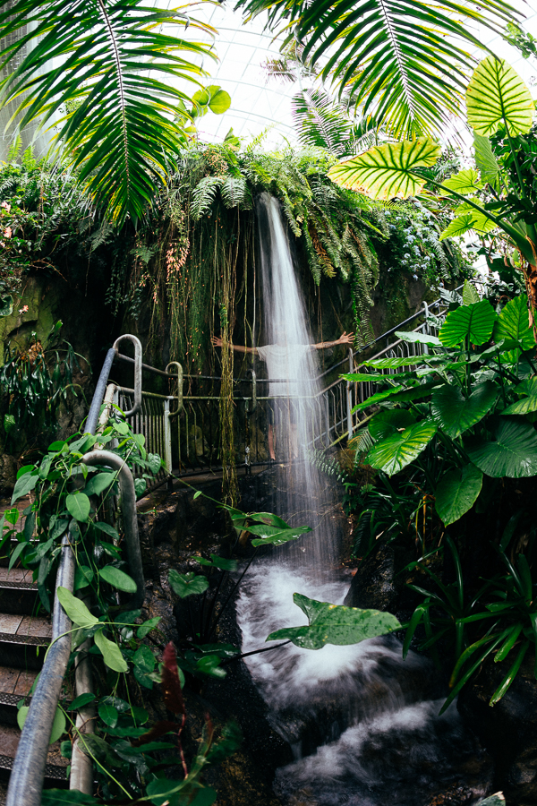 ...and it sprang a leak! Haha, just kidding, it's part of their indoor rain forest.