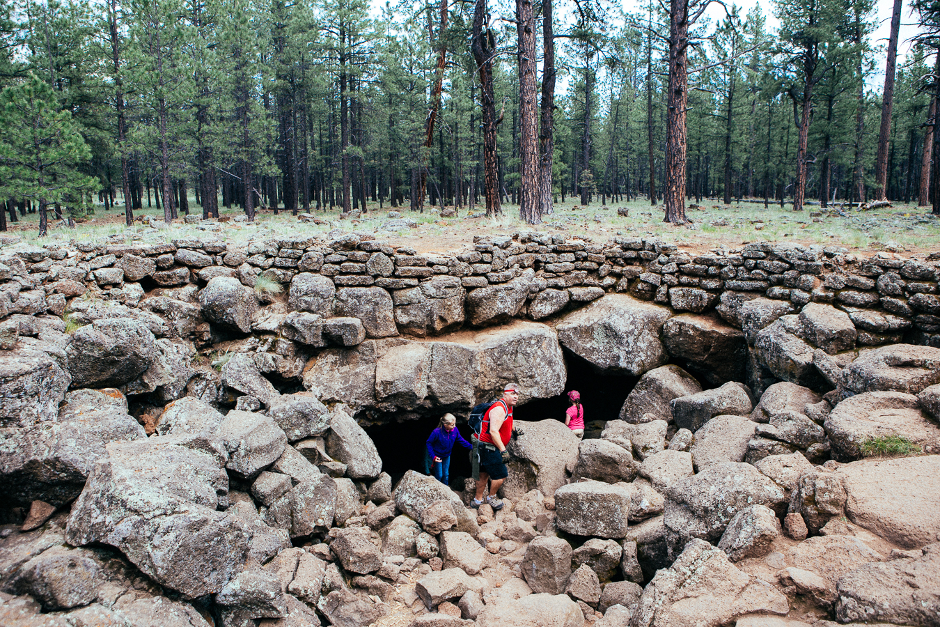 If you know where you're going, out in the middle of the forest is this hole in the ground. It's the entrance to the mile deep Coconino Lava River Cave.