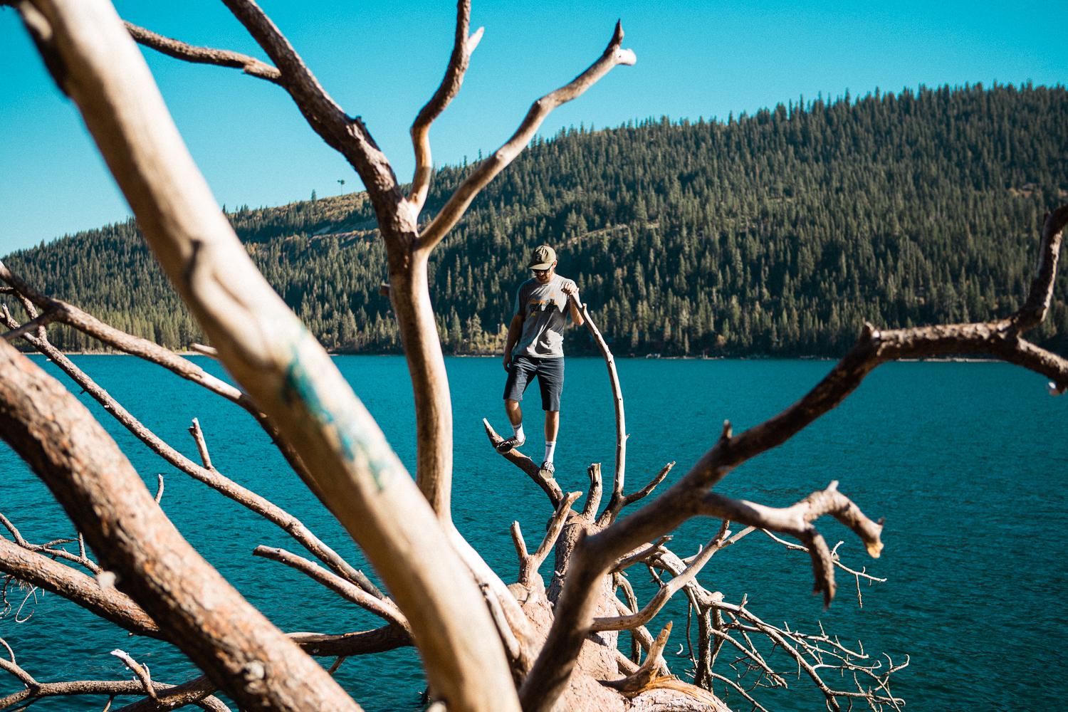 I convinced my good buddy  Tyler to go on a couple adventures with me. This was a fallen tree into Donner Lake that I spotted while cycling the day before. I told him they would make great Tinder profile pics.