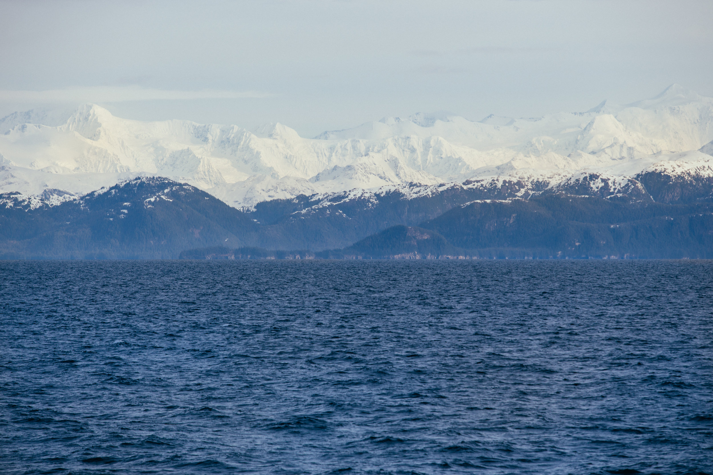 I want to heliski out there...
