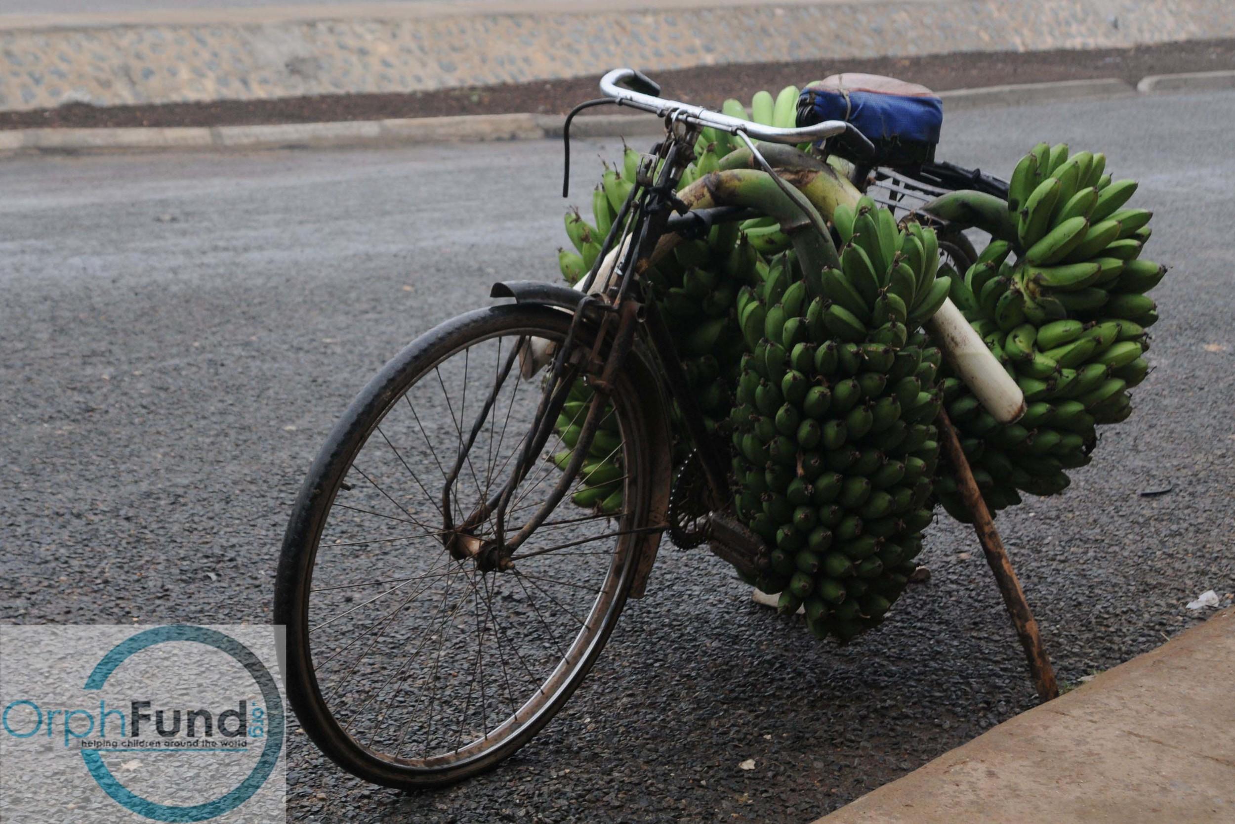 banana bike copy.jpg