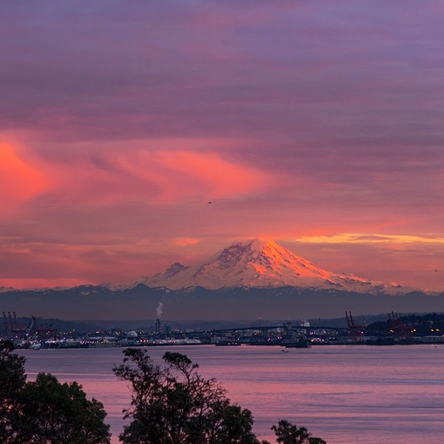 So much sunset goodness tonight . . . . . . . . #seattle #seattlelife #seattlephotographer #rainierwatch #sunset_sunrise_beautiful #westernnature #seattleart #pnw #sunset #nikonusa #washingtonexplored #pnwescapes #landscapephotography #landscape_lovers #landscape_captures #landscapecaptures #landscapephoto #visitseattle #clouds #sky_sea_sunset #livewashington #viewpnw #fs_sunset #sunsetlovers