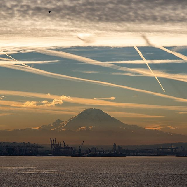 Morning on Elliott Bay . . . . . . . #rainierwatch #seattle #seattlelife #seattlephotographer #pnw #visitseattle #mountrainier #nikonusa #westernnature #mountain_pics #landscape #landscapephotography #landscape_lovers #landscapestyles_gf #landscapecaptures #landscapephoto #washingtonexplored #clouds #contrails #sky_sea_sunset #livewashington #viewpnw #ZonePhotographer #elliottbay