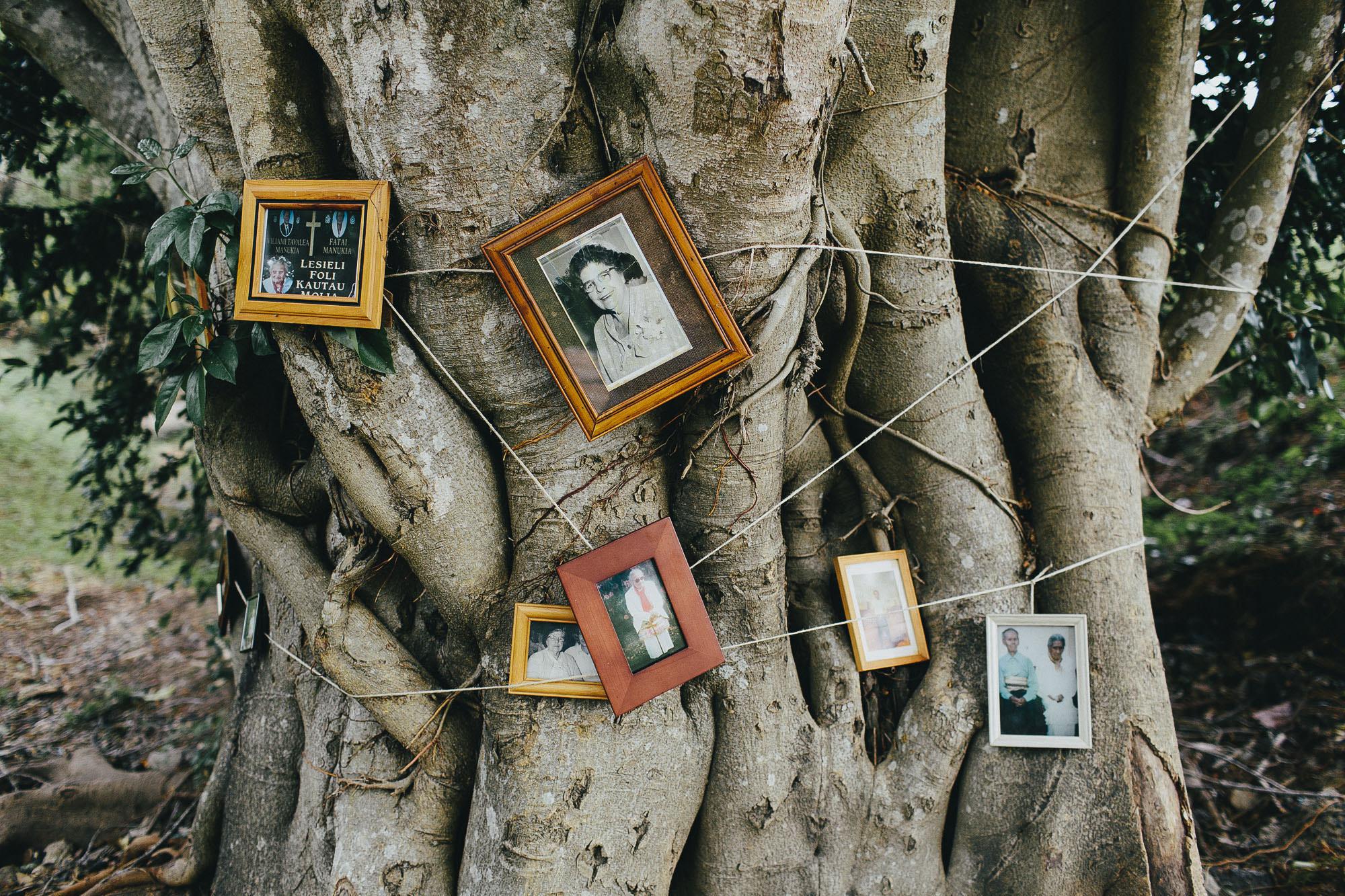 037 finch and oak, wedding photography, gold coast, byron bay.jpg