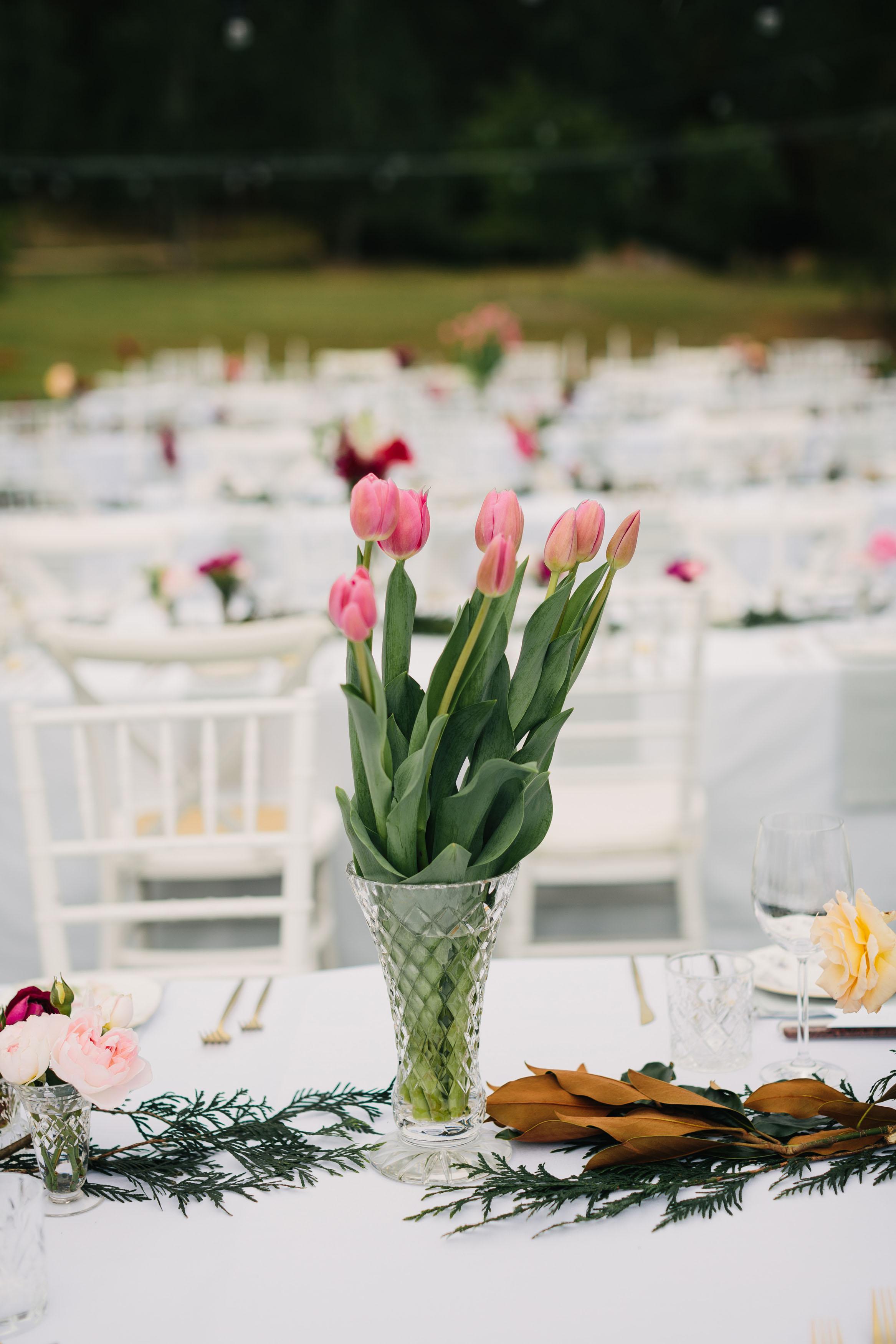 100_hunter_valley_wedding_photography_redleaf_paul_bamford_finchandoak.jpg