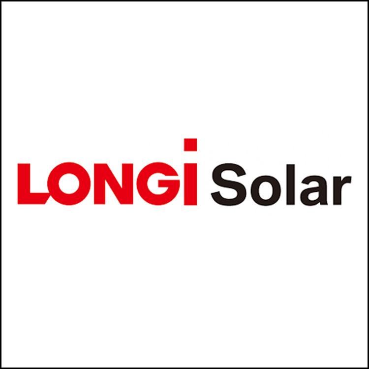square longi.jpg